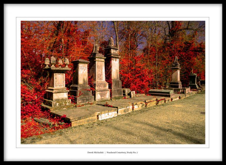 UK - London - Nunhead Cemetery - 23 April 2021 DSC_7203 Nunhead Cemetery, Study No. 7