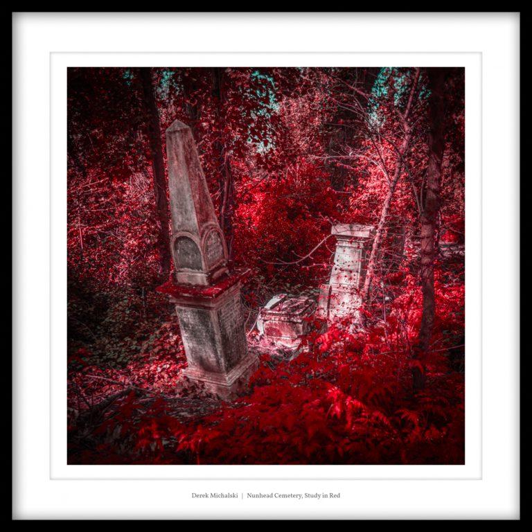 UK - London - Nunhead Cemetery - 23 April 2021 DSC_7238 Nunhead Cemetery, Study in Red